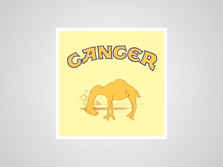 camel-cancer